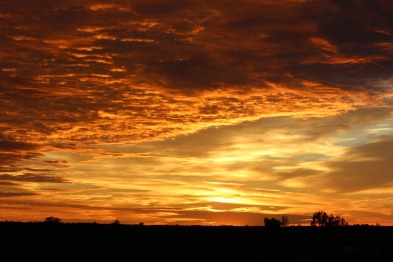 sunrise-1226471_1920